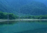 それぞれの地域に住んでいる空気・水・土を生かす。のイメージ写真