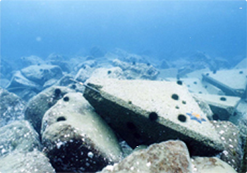 「抗酸化溶液混入コンクリート」による水質浄化のイメージ写真