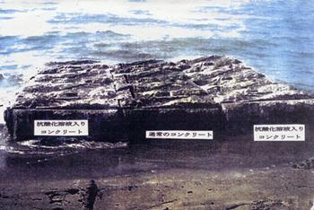 抗酸化溶液混入コンクリートによる海水中の水草発芽成長実験のイメージ写真