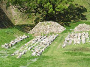 熊本城石垣修復