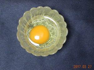 生卵保存実験(容器無)①