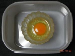 生卵保存実験(容器有)②