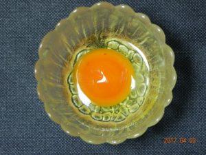 生卵保存実験(容器無)②