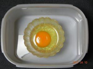 生卵保存実験(容器有)③