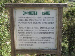 松谷棚田①