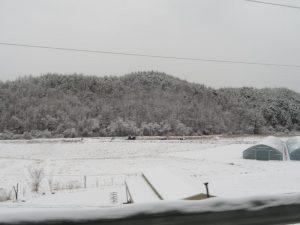 雪が深くなる田舎道