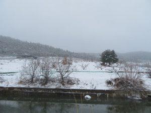 洛東江(ナットンガン)