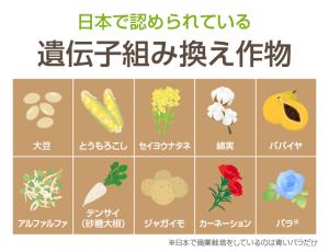 日本で承認されている遺伝子組換え農作物等リスト