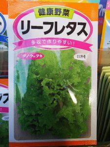 日本農産種苗株式会社・リーフレタス