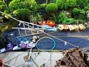 台風21号通過後の翌朝の自宅の庭