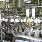 卵分割工程