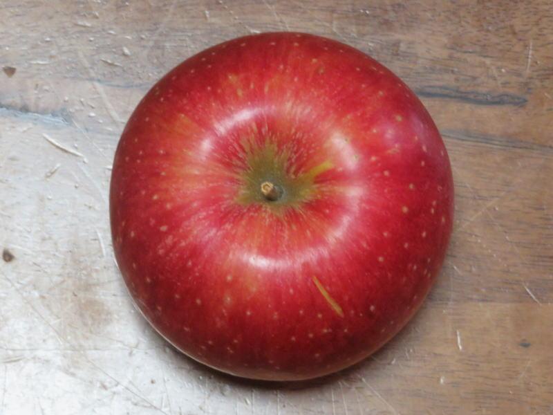 抗酸化リンゴ③