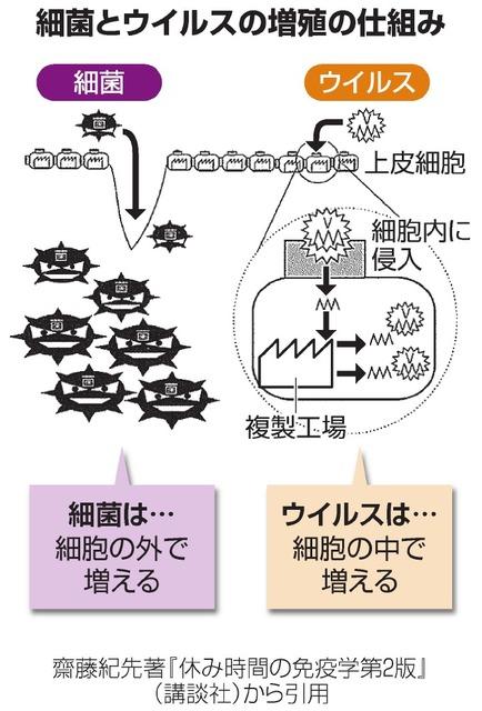 菌・ウィルスの増殖法