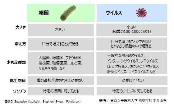 菌とウィルスの違い